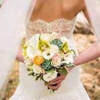 Toast Bridal