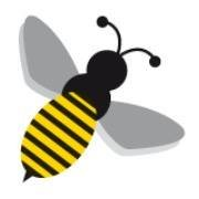 Queen Bee Home Services