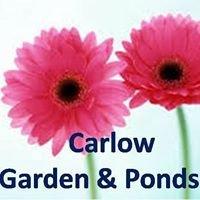 Carlow Garden & Ponds