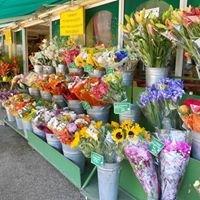 Moisson de fleurs