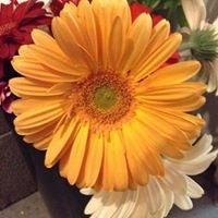 Lepanto Flower Shop