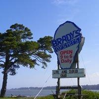 Bradys Oysters