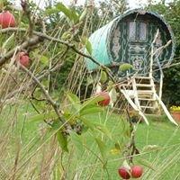 Somerset Garden Yurt and Gipsy Caravan