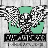 Owl & Windsor