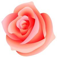 Blooming Rose Esthetics