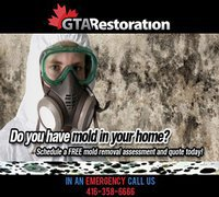 Mold Removal Toronto Ltd.