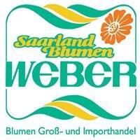 Saarland Blumen Weber