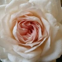 Blomsterhörnan Värnamo