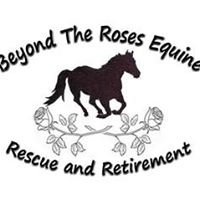 Beyond The Roses Equine Rescue & Retirement