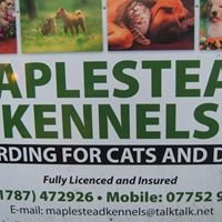 Maplestead Kennels and Cattery