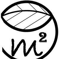 M2 Lumber LLC