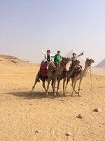 Egipto Tours