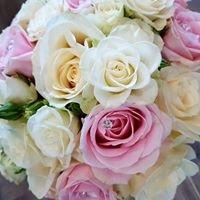 Flowers By Calla Mango
