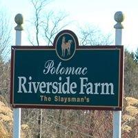 Potomac Riverside Stables