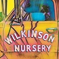 Jason Wilkinson Nursery