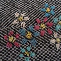 Stitchwort and Clover