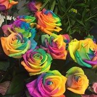 Heather Lea Florists Ansdell