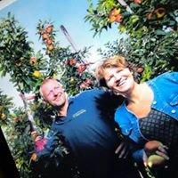 Boerderijwinkel Fruitbedrijf Horstink