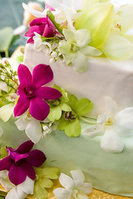 Custom Beach Weddings Directory