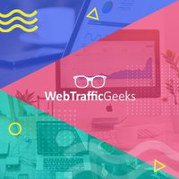 Web Traffic Geeks