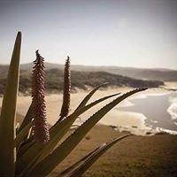 Swell Eco Lodge Wild Coast