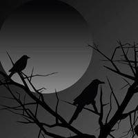 Streatorland Paranormal Investigations