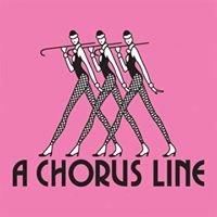 A Chorus Line Dancewear & Costumes