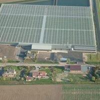 Bio-Kwekerij Poldervaart