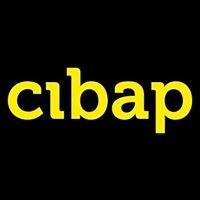 Cibap vakschool voor verbeelding
