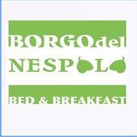 B&B Borgo del Nespolo Peschici