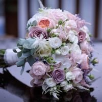 Petal Perfection Wedding Specialists