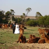 Wedding Venue at Marloo Cattle Ranch