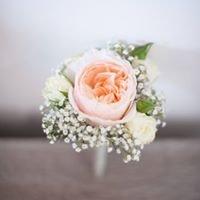 Flowers by Jan Phillips