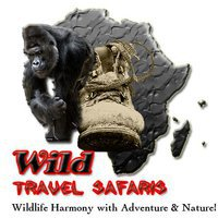 Wild Travel Safaris