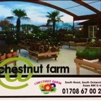 Chestnut Farm Garden Centre, Shopping & Retail