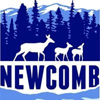 Discover Newcomb, NY.  Located in The Adirondack Park