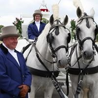 Spirit Wedding Carriages