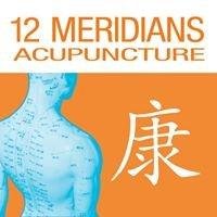 12 Meridians Acupuncture & Wellness