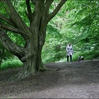 Thorndon Country Park
