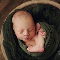 Hillary Wheat photography, Denver newborn photographer