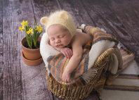 Sasha Conlan Photography specializing in Newborns