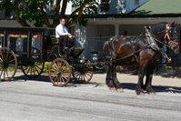 Ellinger-Kunz & Park Funeral Home & Cremation Service