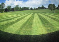 GreenPal Lawn Care of Cleveland