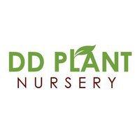 DD Plant Nursey