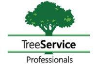 Winston-Salem Tree Service
