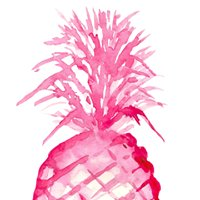 The Pink Pineapple of Hilton Head