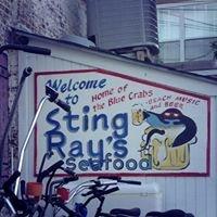 Sting Rays Tybee Island