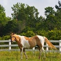 Springs Equestrian Center