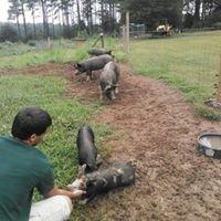 Green Trust Farms