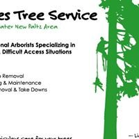 Midavies Tree Service